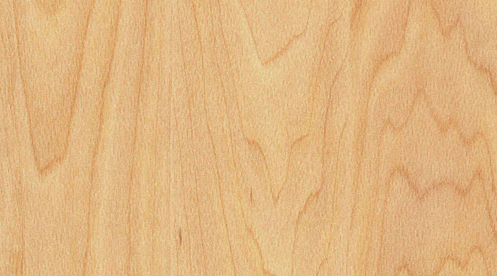 Taraflex Sport M Evolution_Wood_6381 Maple Design